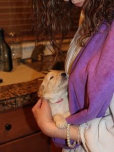 Puppy sling Tigger 3 weeks