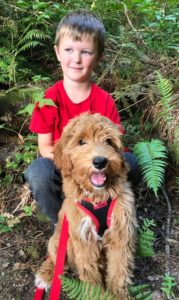 Best Portland Oregon Labradoodle puppy breeder