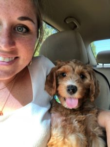 Washington best Labradoodle puppy breeders