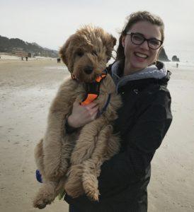 Labradoodle puppies Oregon breeder