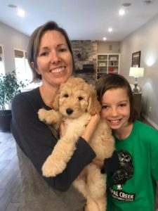 Australian Labradoodles best Oregon breeder